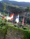 Banderas_drago3